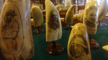 museu-do-scrimshaw